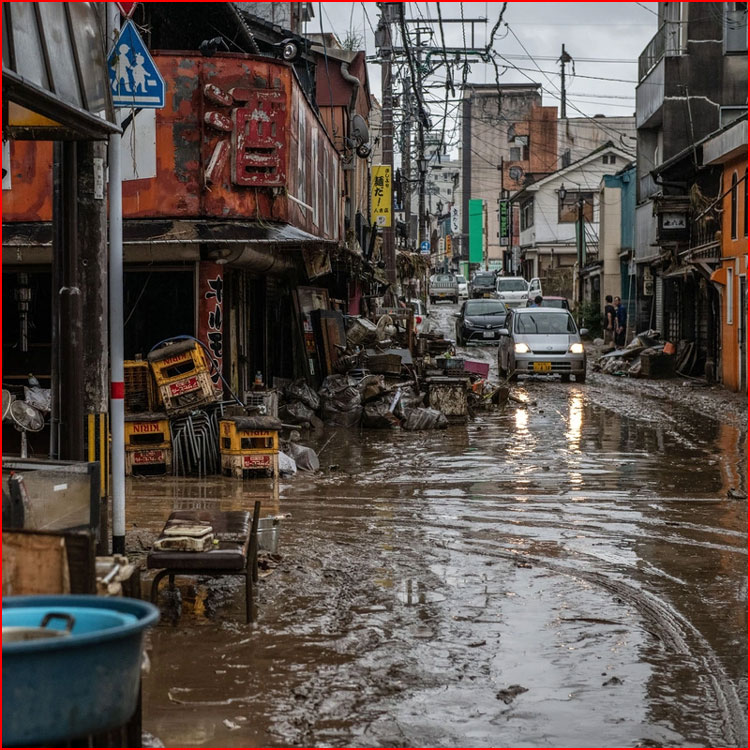 Наводнение в Японии 2020  (гей блюсик 19619)