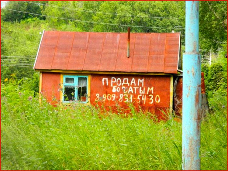 Сельское житие  (гей блюсик 19647)