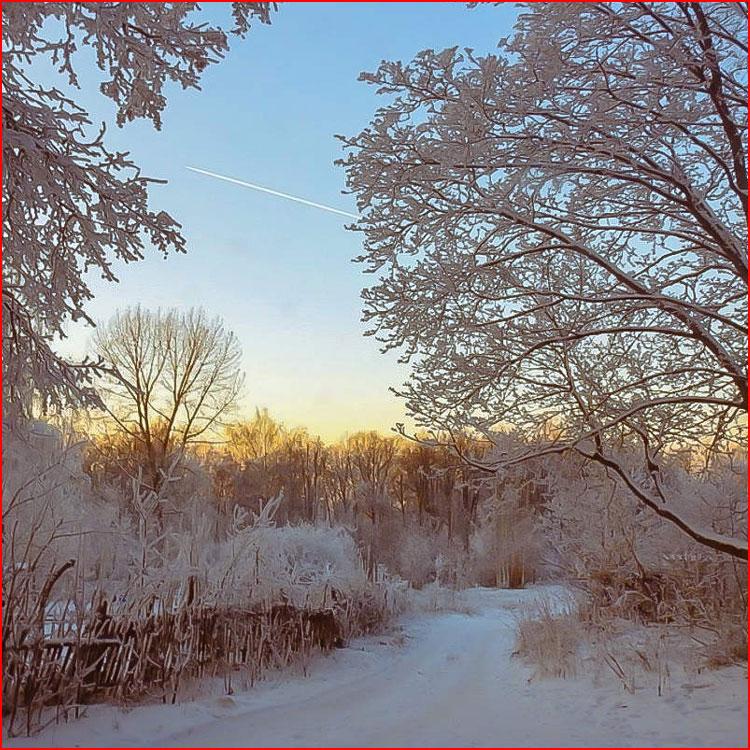 Зимняя фотозарисовка  (гей блюсик 20243)