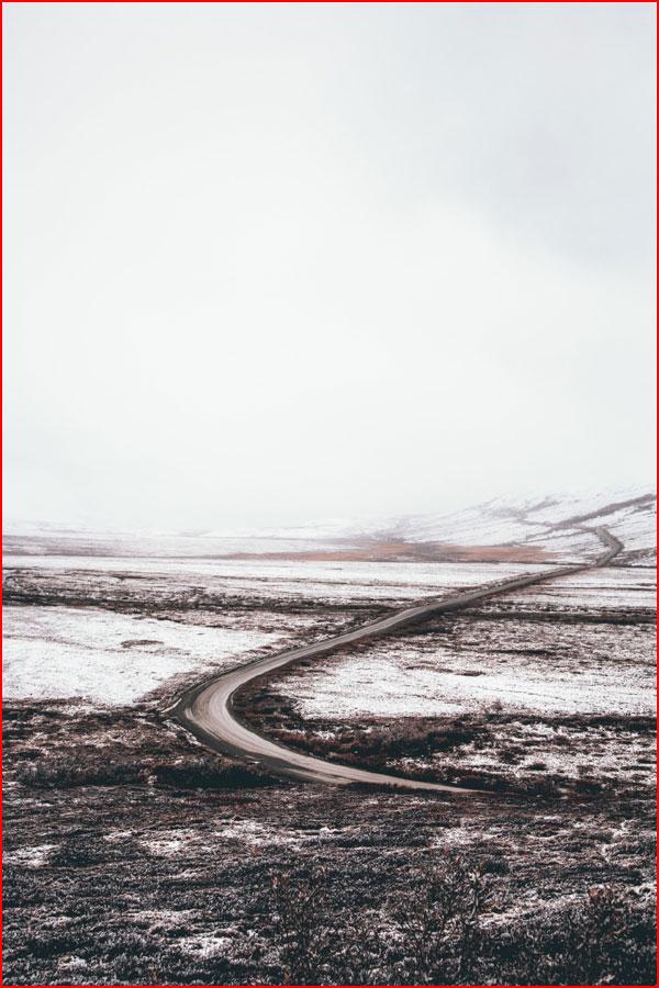 Пейзажи Джексона Урсина  (гей блюсик 20267)