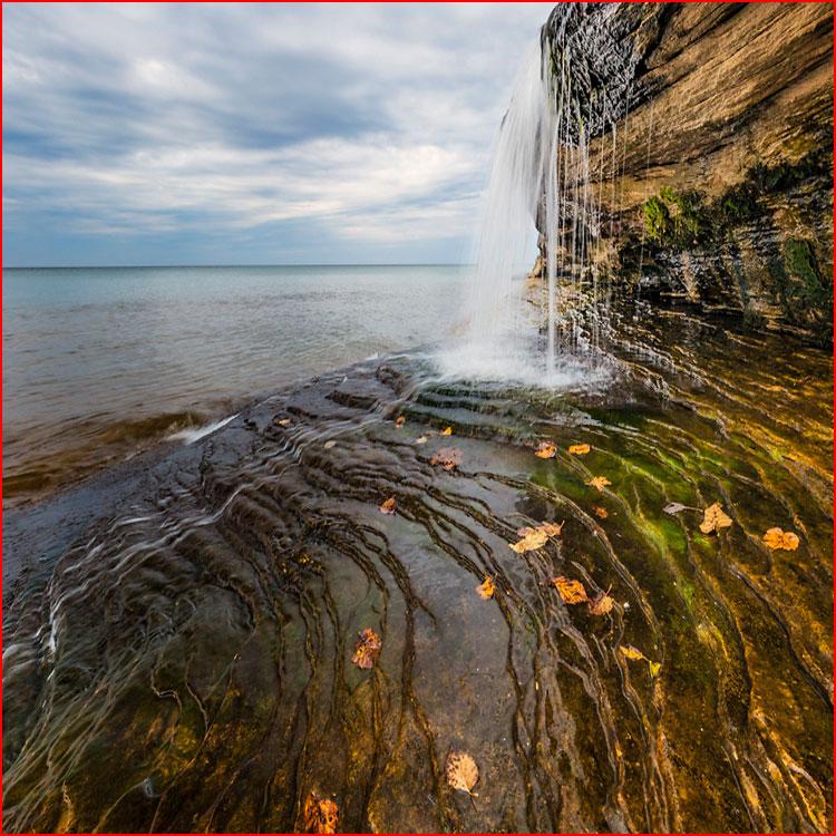 Осень в объективе фотографа-натуралиста Адама Джонса