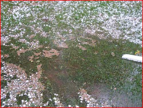 Сюрпризы лета: ледяной дождь и град  (гей блюсик 2295)