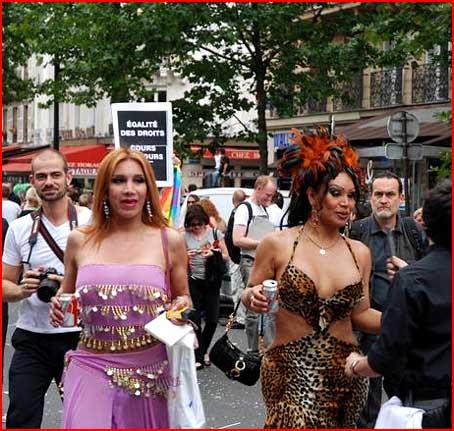 Ге-гей, Париж!  (гей блюсик 2651)