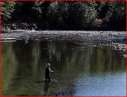 Рыбалка  (гей блюсик 2667)