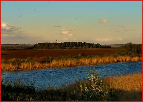 На хуторе близ Диканьки  (гей блюсик 2835)