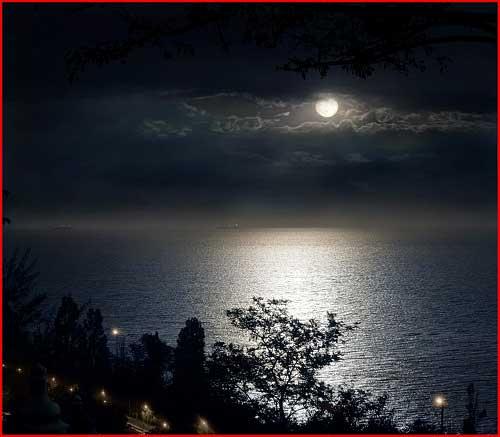 Тиха украинская ночь  (гей блюсик 2979)