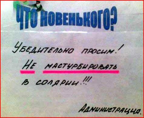 Закусочка с юморком  (гей блюсик 3495)