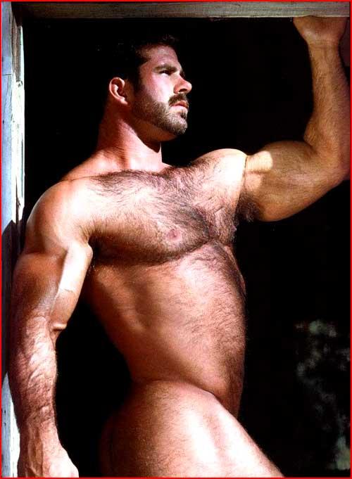 Медведь  Pete Kuzak  (гей блюсик 4854)