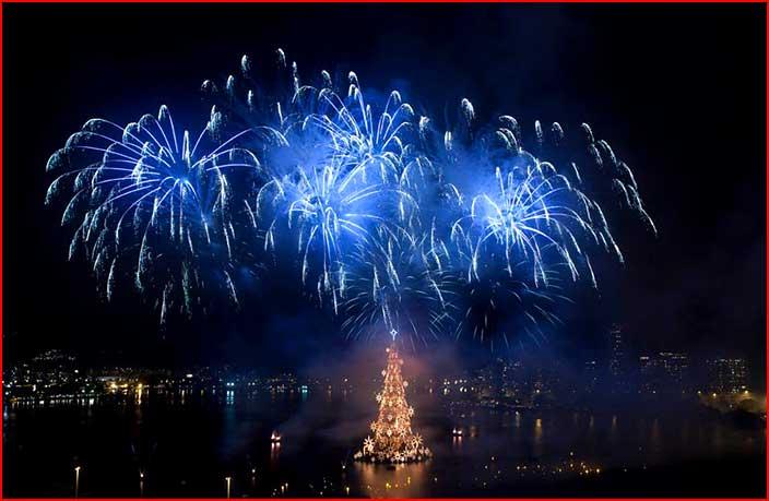 Новый год приближается  (гей блюсик 5695)