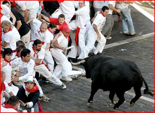 Люди против быков  (гей блюсик 663)