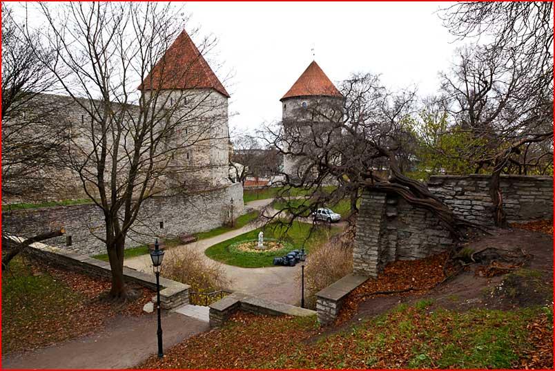 Старый Таллинн  (гей блюсик 7135)