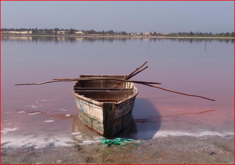 Розовое озеро  (гей блюсик 7787)