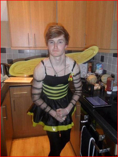 Пчелка гей знакомства