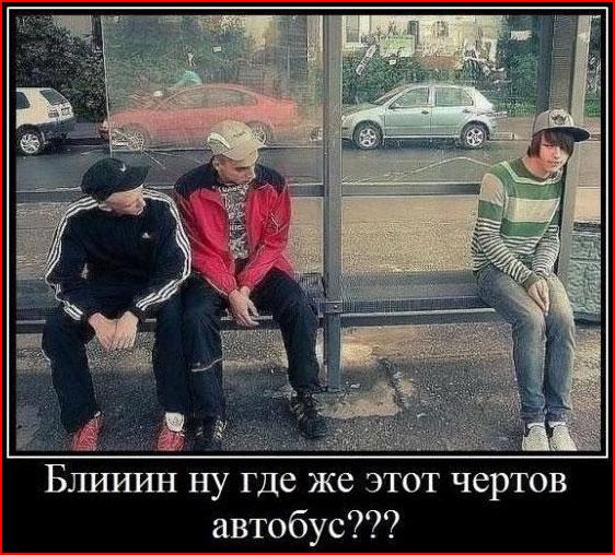 """Демотиваторы """"про  это""""  (гей блюсик 8427)"""