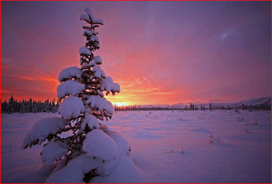 Зимушка-зима  (гей блюсик 8615)