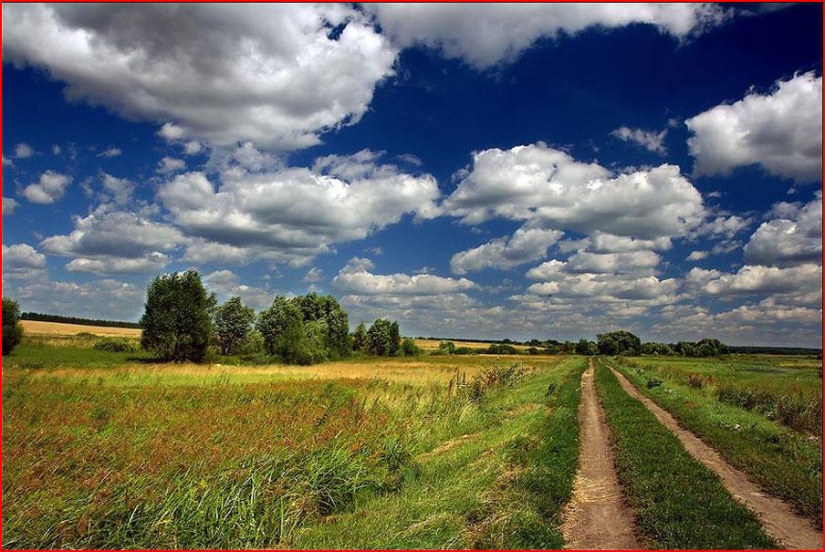 Лето в России  (гей блюсик 9268)
