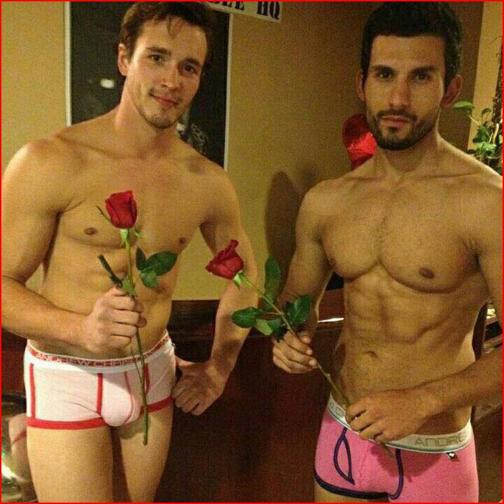 Цветы друг другу  (гей блюсик 9437)