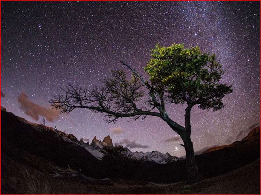 Лучшие фотографии National Geographic  (гей блюсик 9471)