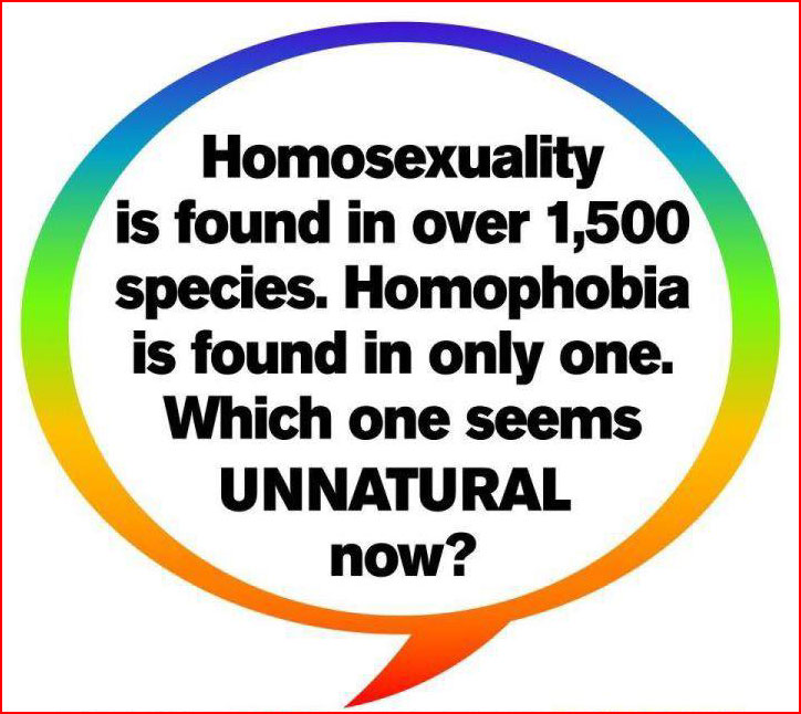 the effects of homophobia on homosexuals Not able to find what you're looking for use the search bar for specific content or feel free to contact us for further assistance.