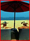 Двое под зонтом  (гей фото, блюсик 14045)