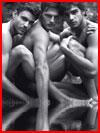 Трое у озера  (гей фото, блюсик 14858)