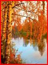 Осенняя фотозарисовка  (гей фото, блюсик 15515)