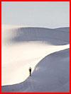 В пустыне Сахара выпал снег  (гей фото, блюсик 15963)