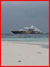 Новогодний отдых на Мальдивах  (гей фото, блюсик 16007)