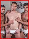 Тройка разгорячённых  (гей фото, блюсик 16196)