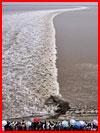 Приливная волна: против течения  (гей фото, блюсик 16943)