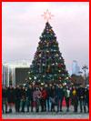 Новогодний Баку 2019. Фотозарисовка  (гей фото, блюсик 17419)