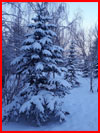 Зимушка-зима  (гей фото, блюсик 17423)