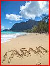 Гаваи. Гонолулу и остров Оаху (фотозарисовка)  (гей фото, блюсик 17607)