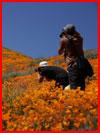 Пришла весна  (гей фото, блюсик 17751)