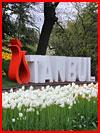 Весенний Стамбул  (гей фото, блюсик 17907)