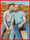 Среди цветов  (гей фото, блюсик 18025)