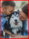 Двое и собака  (гей фото, блюсик 18440)