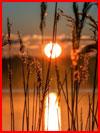 Закаты и рассветы фотографа Сергея Пожога  (гей фото, блюсик 18447)