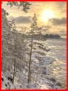 Январь. Фотозарисовка  (гей фото, блюсик 18887)