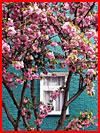 Лондон в цвету  (гей фото, блюсик 19331)