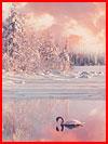Зимние пейзажи Юусо Хямяляйнена  (гей фото, блюсик 20291)