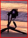 Море, море...  (гей фото, блюсик 8723)