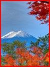 Осень в Японии  (гей фото, блюсик 9691)